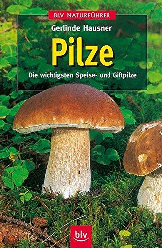 Pilze: Die wichtigsten Speise- und Giftpilze (BLV Naturführer)