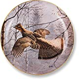Misty Morning Grouse by David Maass 9.25 Decortive Collector Plate