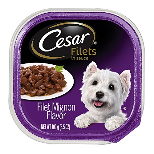 Cesar GOURMET FILETS in Sauce Filet Mignon Flavor in Meaty Juices Wet Dog Food Trays, 3.5 Ounce (Pack of 24)