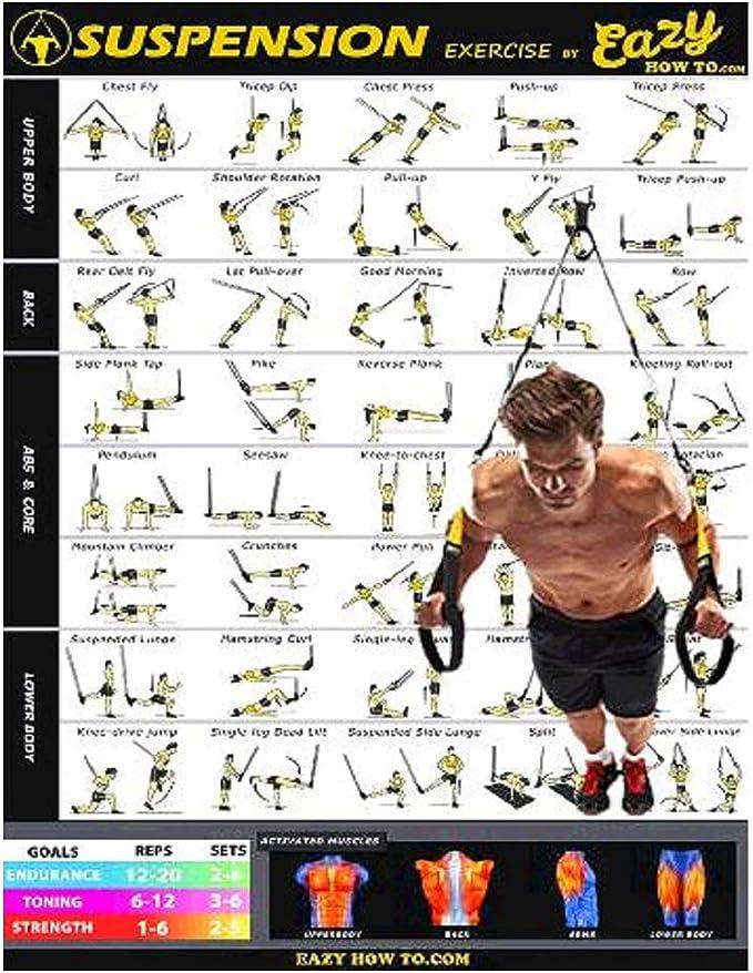 Póster para ejercicios en cables de suspensión, 51 x 73 cm, tonificación, musculación, de Eazy How To
