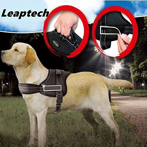 Leaptech(TM) Hundegeschirr Hundekörper Auffanggurt Padded Extra Big Large Medium Small Heavy Duty variieren von allen Arten von Größe (L)
