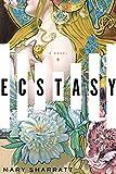 Ecstasy: A Novel