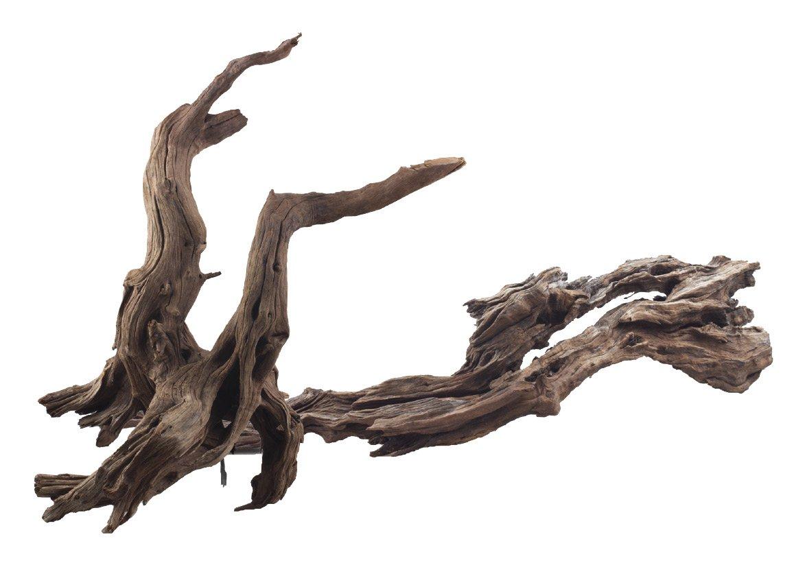 AMTRA Ikebana Bois Décoration pour Aquariophilie 20-30 cm A8047952