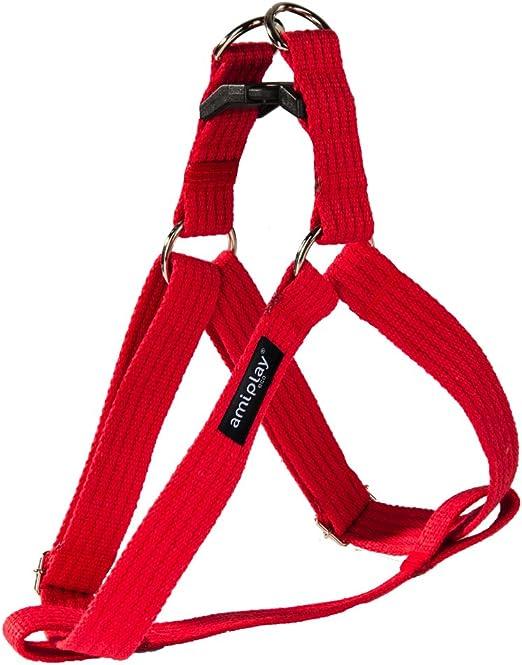 Ami Play algodón Perro arnés Suave y Duradero con Asas Ajustables, pequeño, Color Rojo: Amazon.es: Productos para mascotas