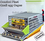 Quail Cage, The patented design, First in the world, professional quail egg cage