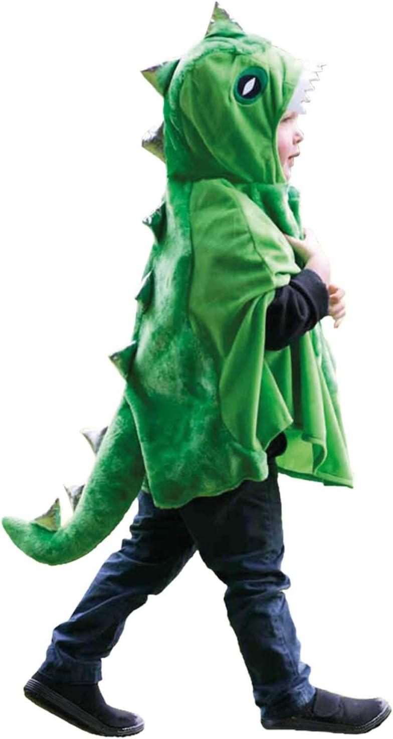 Dinosaur - Disfraz de dinosaurio para niño, talla 4-8 años (PB-DIN ...