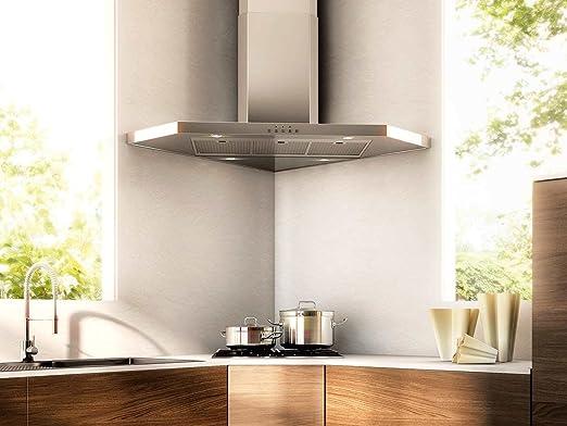 Franke Kitchen Systems FFC 905 XS - Extractor de humos de pared, formato en esquina, de acero inoxidable: Amazon.es: Hogar