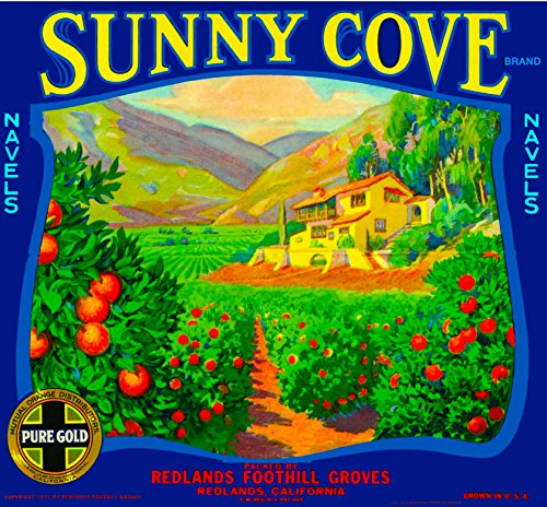 - A SLICE IN TIME Redlands, San Bernardino County Sunny Cove Orange Citrus Fruit Crate Box Label Art Print