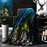 Unique Custom Double Sides Print Flannel Blankets A Colorful Crinoid Clings To A Shallow Reef In Indonesia This Part Of The Tropical Pac Super Soft Blanketry for Bed Couch, Twin Size 60 x 80 Inches