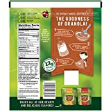 Nature Valley Maple Brown Sugar Granola Crunch Pouch, 16 Ounce