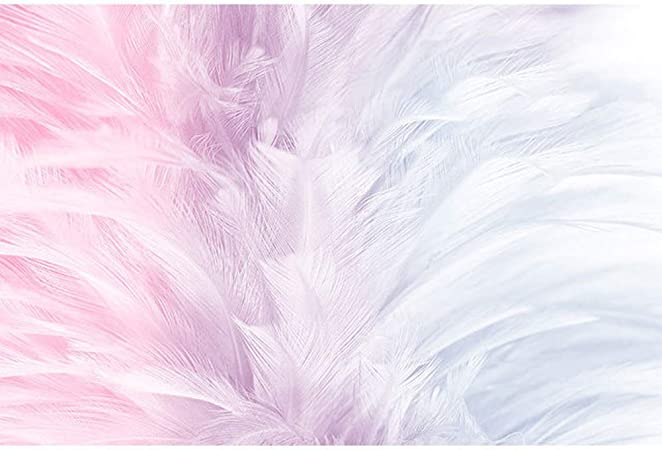 Z Ss Modern Mural Photo Wallpaper 3d Pink Feather Straw Embossed Wall Covering Tv Background Wall Paper For Living Room Sofa 448cm 280cm Amazon Co Uk Kitchen Home