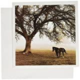 Image of Western Sepia Toned Horse on a Ranch with an Oak Tree - Greeting Cards, 6 x 6 inches, set of 6 (gc_202972_1)