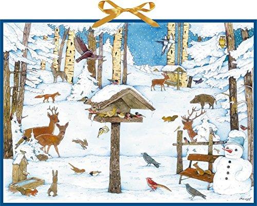 Vogelhaus im Wintergarten. Wand-Adventskalender Christian Kämpf Coppenrath F Briefchen zum Selberfüllen