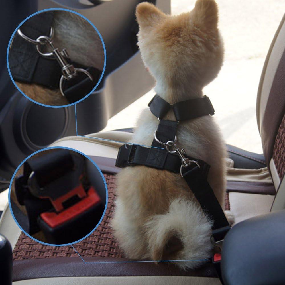 Topsky Lot de 2/C/âbles de s/écurit/é de voiture pour chien ceinture de s/écurit/é,