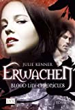Blood Lily Chronicles: Erwachen