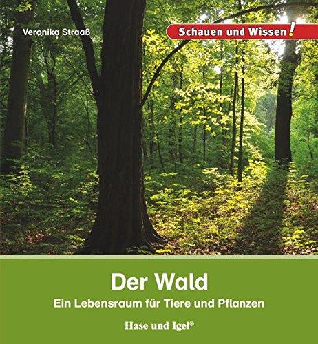 Der Wald: Schauen und Wissen!