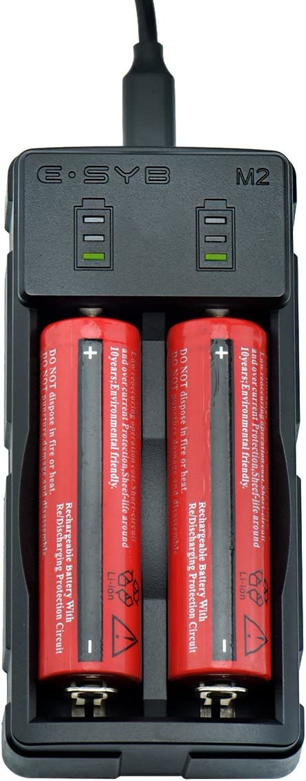 ESYB Universal Smart Battery Charger with Indicators for Rechargeable Li-ion Batteries