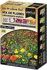 Huerto Urbano - Mix de flores Crecimiento rápido - Batlle: Amazon ...