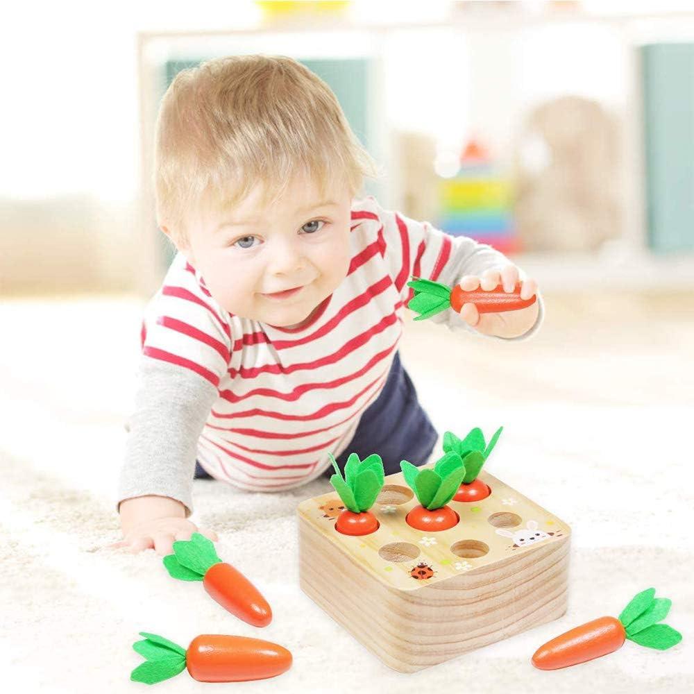 Juguete de Zanahoria de Madera,Juego de Clasificaci/ón de Tama/ño de Forma de Cosecha de Zanahorias,Adecuado para Ni/ños y Ni/ñas Mayores de 2 A/ños para Aprender Habilidades Motoras Finas en Preescolar