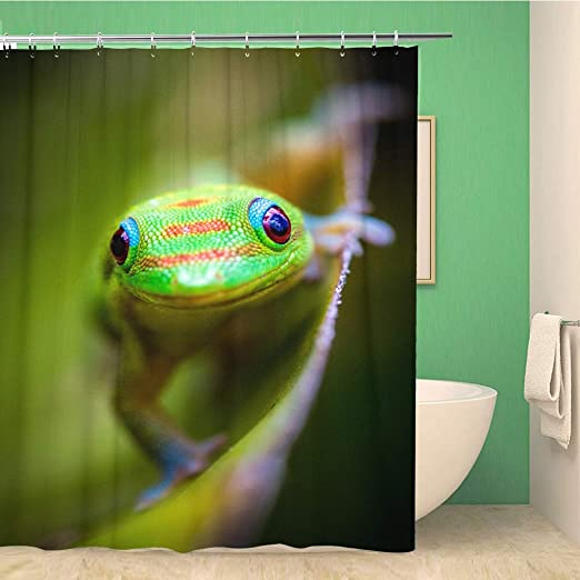 1 Pc Waterproof Frog-on-Tree Shower Curtain for Home and Bathroom