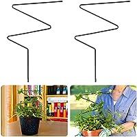 UYT 2 stuks DIY tuinplantensteunen voor mini-klimplanten, metaal