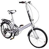 Mountain Folding Storage Bike 6 Speed 20inch Alloy Wheel Steel Frame Bicycle Double Disk Brake (Silver)