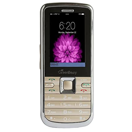 GreenBerry W1 Plus 2.4 inch Screen Phone with 4000mAh Battery  4 SIM, Gold
