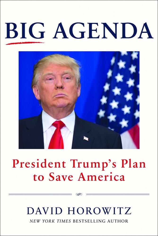 David Horowitz Big Agenda 9781630060879