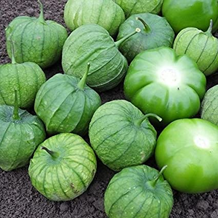 Portal Cool 10 - Semillas: Tamayo F1 Hybrid Tomatillo Semillas - para Salsas Verdes y