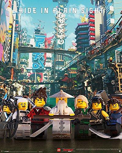 Amazoncom The Lego Ninjago Movie Mini Movie Poster Print Hide