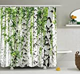 Woodland Decor Shower Curtain Set by Ambesonne, Birch Trees in the Forest Summertime Wildlife Nature Themed Decorating Picture, Bathroom Accessories, 84 Inches Extralong, White Green