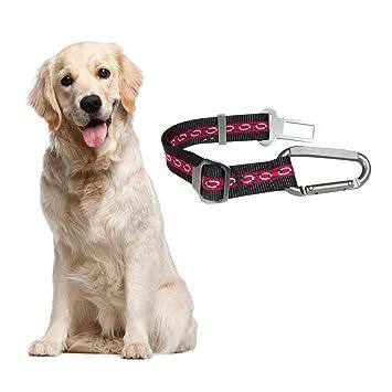 Domiluoyoyoyo cinturón de Seguridad para Perro, cinturón de ...