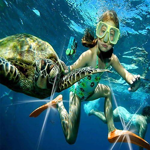 シュノーケリング 足ひれ フルフットタイプ 水泳活動シュノーケリング水泳用フィンダイビングフィンひれ水泳用、シュノーケリング、