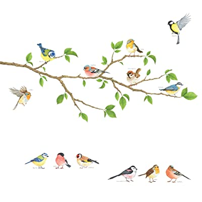 DECOWALL DA-1804 Garden Birds on Tree Branch Kids Wall Stickers Wall Decals Peel and Stick Removable Wall Stickers for Kids Nursery Bedroom Living Room: Home & Kitchen
