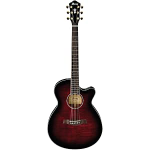 Ibanez AEG240 Thinline Recording Acoustic-Electric Guitar review