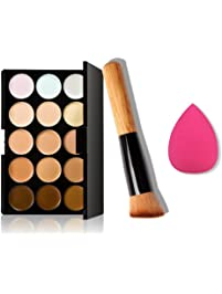 Software at amazon pc mac software ninasill 15 colors makeup concealer contour palette water sponge puff makeup brush fandeluxe Image collections