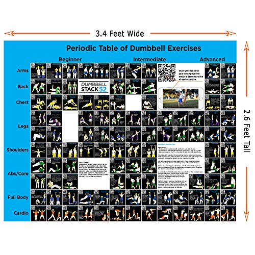 Dumbbell Exercise Poster (Large): Periodic Table of Dumbbell Exercises by Stack 52. Video Instructions Included. For Training with Adjustable Free Weight Sets & Home Gym Fitness Full Body Workouts.