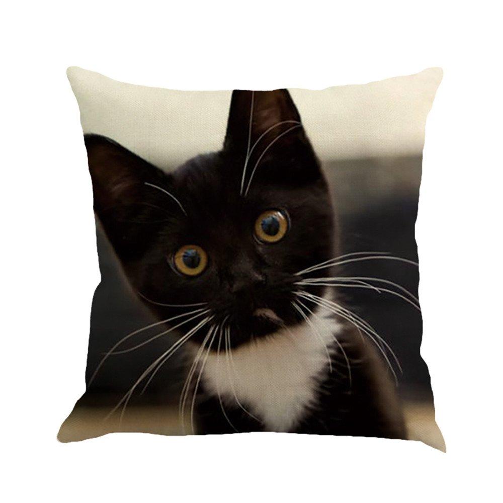Animal Throw Pillow Cushion Cover,Cute Cat Square Pillowcase Home Decoration