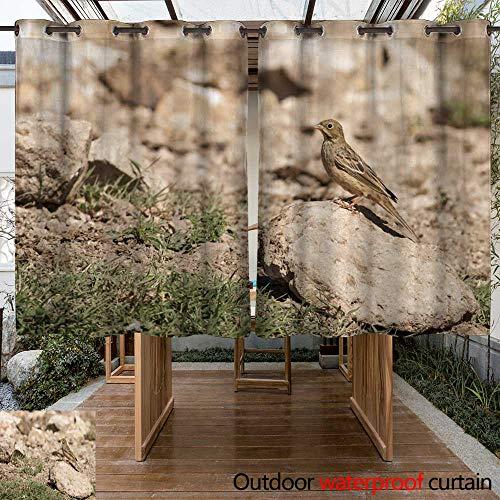 WinfreyDecor Outdoor Balcony Privacy Curtain Ortolan Bunting (Emberiza hortulana) Female W108 x L72