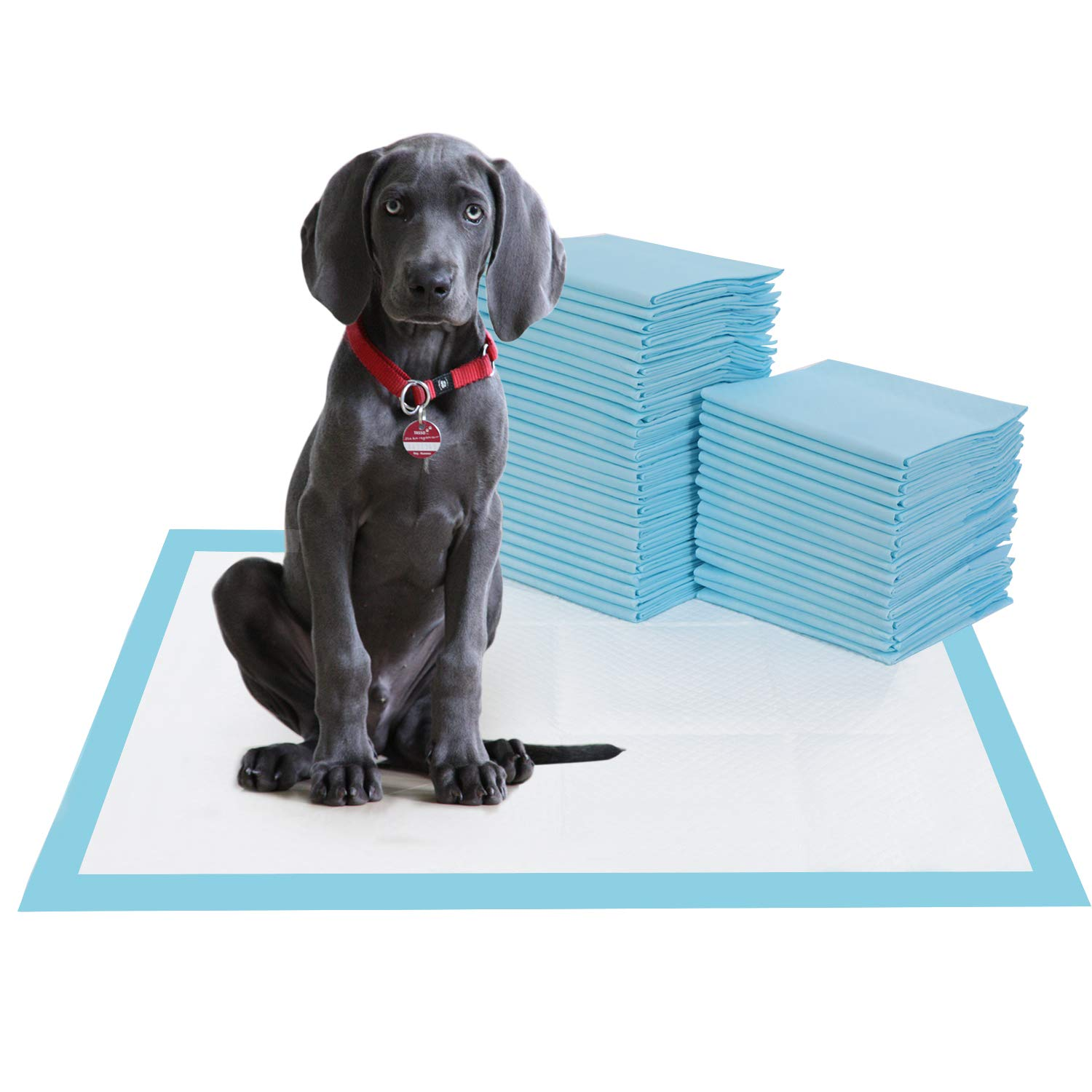 BESTLE Large Pet Training and Puppy Pads Pee Pad for Dogs 24''x24''-80 Count Super Absorbent & Leak-Free