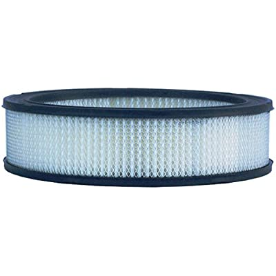 Luber-finer LAF1782 Heavy Duty Air Filter: Automotive