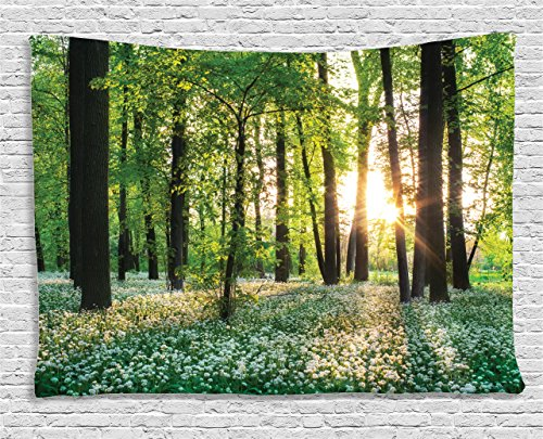 Scene Wall Tapestry (Ambesonne Farm House Decor Collection, Sunny Forest with Wild Garlic Enchanting Wildflowers Blossoms Landscape Scene, Bedroom Living Room Dorm Wall Hanging Tapestry, 60 X 40 Inches, Green White)