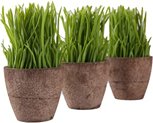 Artificial Plant Mini Fake Plants Plastic Green Potted 3 Pcs , for Home Office Dining Room Table Centerpiece Decoration