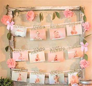 Jevenis Baby Shower Baby Girl Pink 1 12 Months Photo Rope Banner 1st