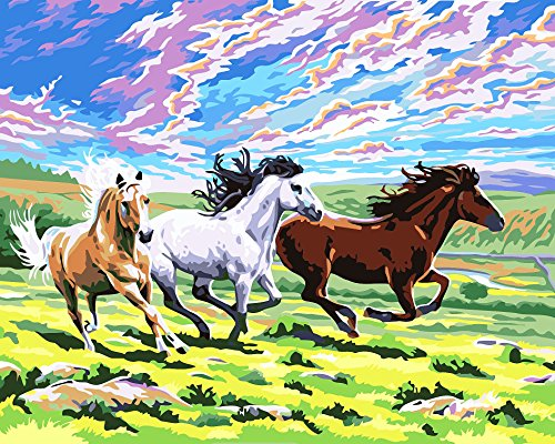 JynXos Wooden Framed Paint By Number Horses Linen Canvas DIY Painting - Running Horse