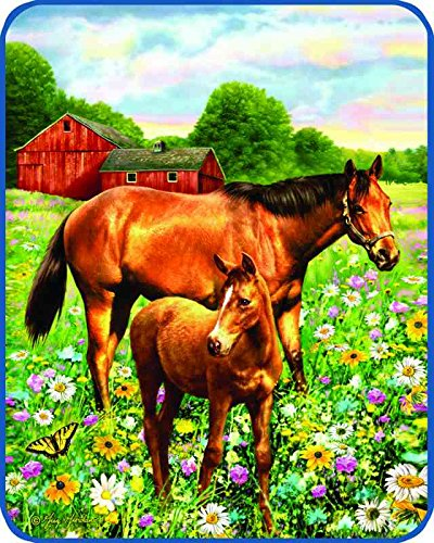 Mare and Foal Heavy Weight Faux Mink Fleece Throw Blanket ()