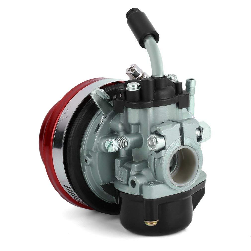 Leoboone Mini Zweitaktmotor Vergaser mit Luftfilter f/ür 49ccm 50ccm 60ccm 66ccm 80ccm Motorisiertes Fahrrad