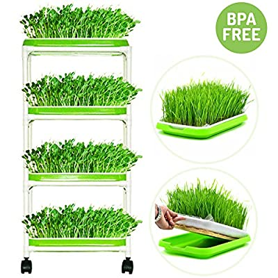 Seed Sprouter Trays with 4 Layers Shelf Soil-Free Healthy Wheatgrass Seeds Grower & Storage Trays for Garden Home …