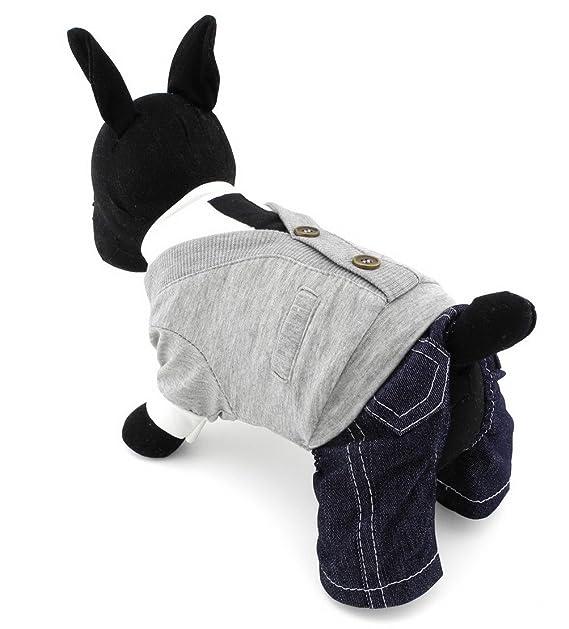 Zunea - Traje de chándal para perro pequeño, estilo universitario ...