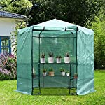 Outsunny-Hexagon-Walk-In-Garden-Greenhouse-PE-Planter-Flower-Growth-Steel-Frame-wZipped-Door-Green